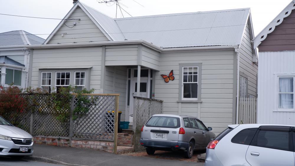 Butterfly in Owen street.jpg
