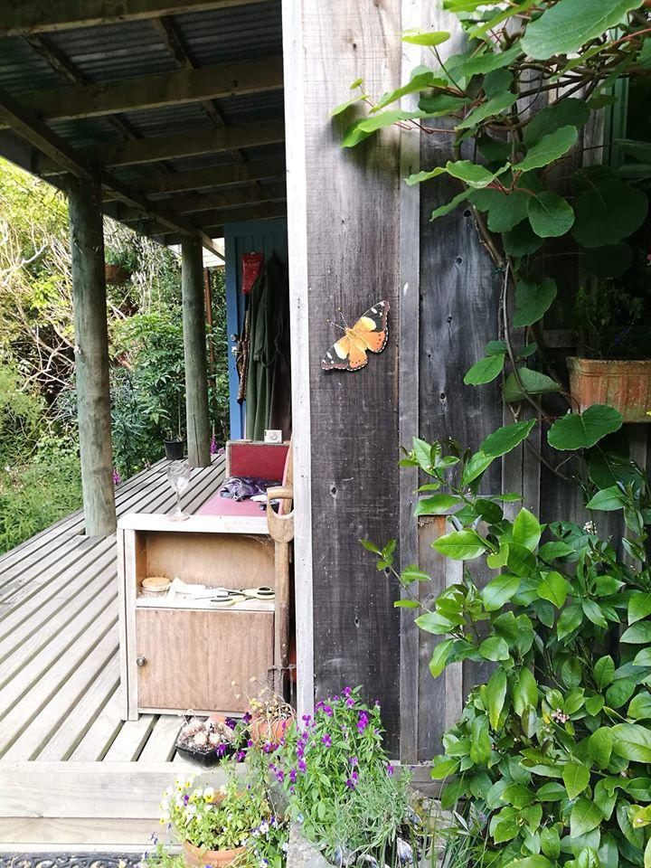 Celia Wade Brown's butterfly.jpg