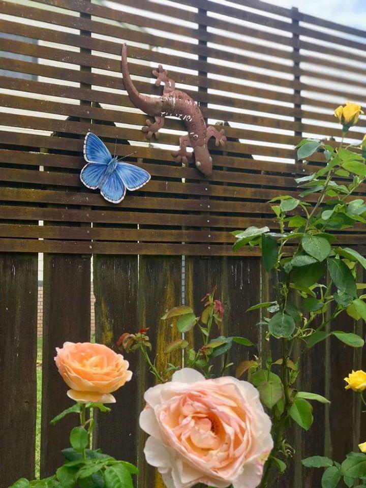 Janet's Butterfly.jpg
