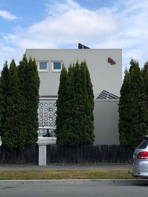 Red Admiral in Christchurch.jpg