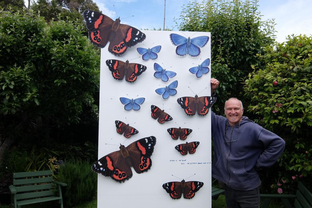 Red Admirals on wall.jpg