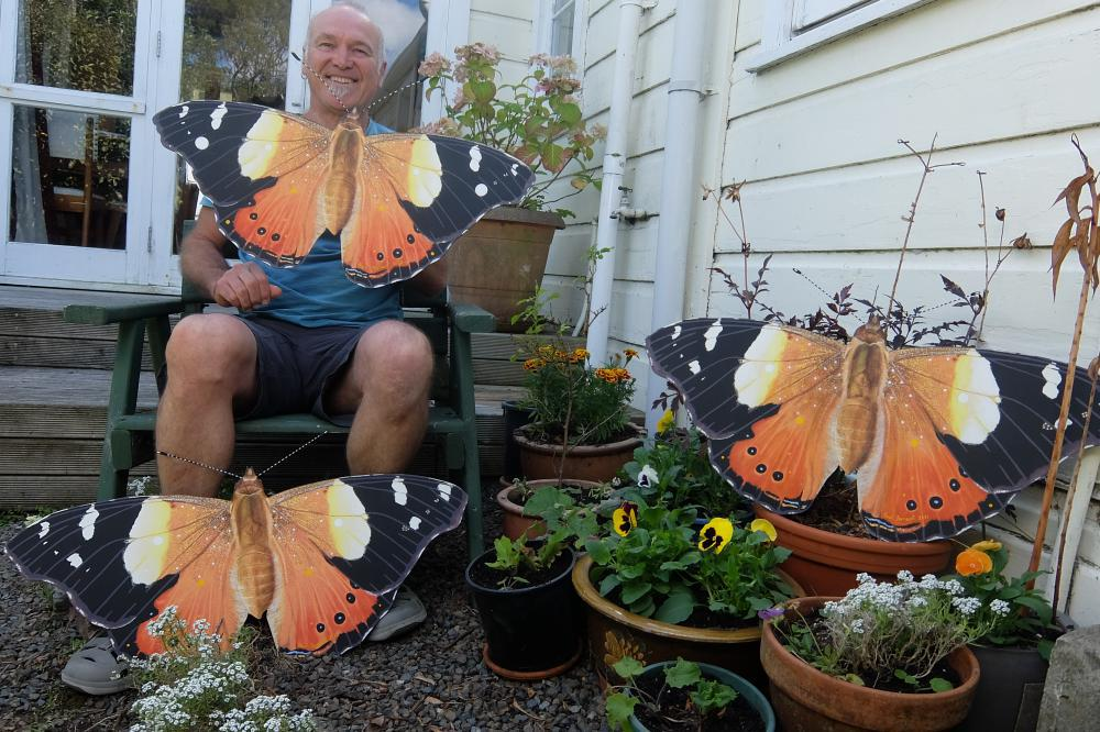 Yellow Admiral's and me.jpg